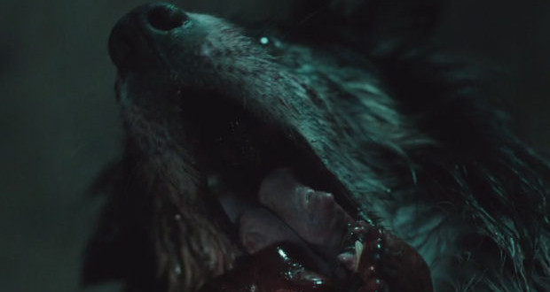 The Hallow: poster e trailer del body horror