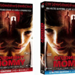 Goodnight Mommy in DVD e in Blu-ray dal 22 settembre con Midnight Factory