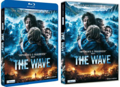 DVD-blu-ray-the-wave