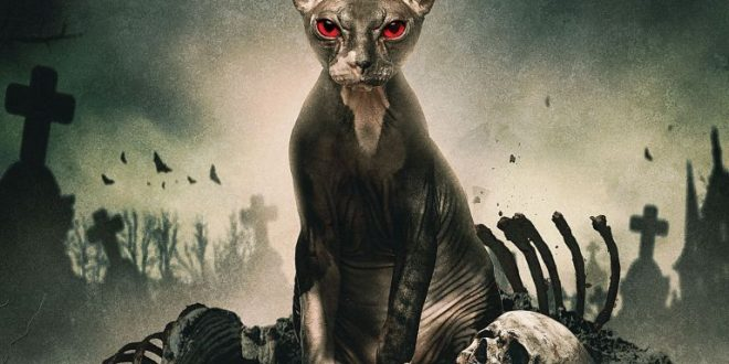 Pet Graveyard: poster e trailer ufficiali dell'horror