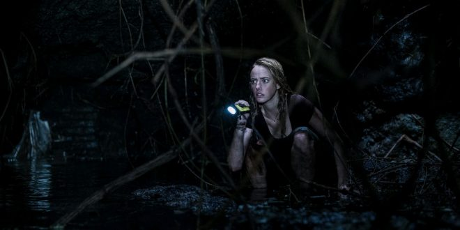 Crawl – Intrappolati: tre foto ufficiali del survival movie