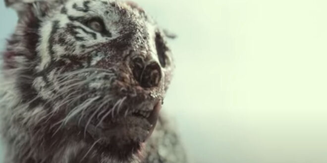 Army of the Dead: una tigre zombie tra i morti viventi – Il full trailer